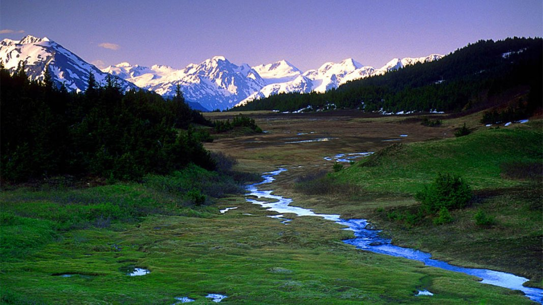 Stream running down through grass with snow-capped mountains in distance.