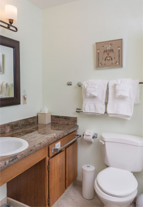 Toilet with grab bars; deep coral granite counter with open area under white sink