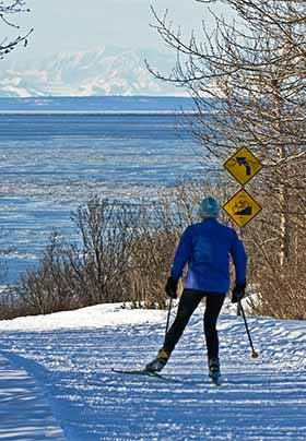 Person in blue coat cross country skiing along road with black and yellow signs on side. Snowy covered mountains in distance.